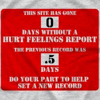 Hurt Feelings Report